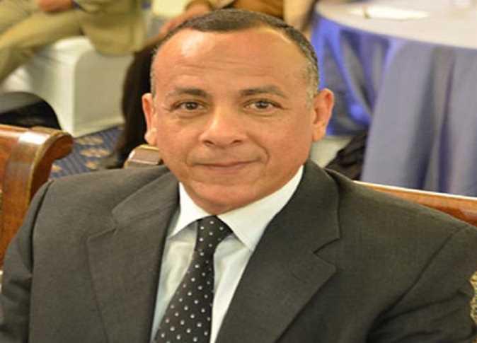 الدكتور مصطفى وزيري، أمين عام المجلس الأعلى للأثار - صورة أرشيفية