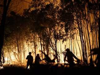 اندلاع الحرائق بغابات أستراليا